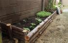 สร้างสรรค์การจัดสวนโดยการปลูกผักสวนครัวในบ้านด้วยตัวเอง